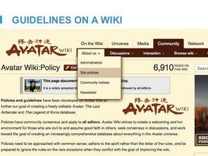 Com Guidelines Slide09