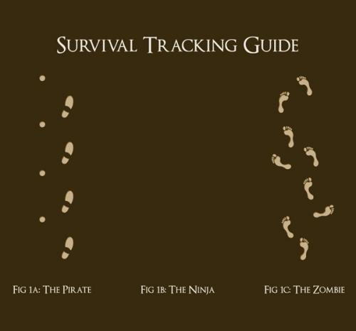 File:Survivaltrackingguide.jpg