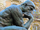 Sannse/Admin Philosophy Revisited