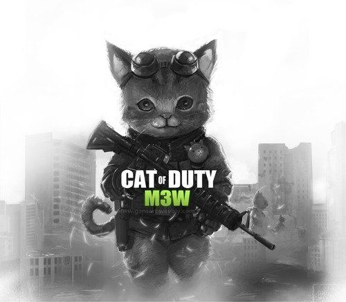 File:CALL OF DUTY GATIL.jpeg