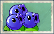 File:Blueberries Seed Packet-0.png