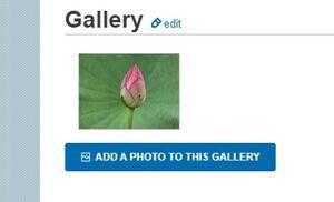 UPC Gallery Sample