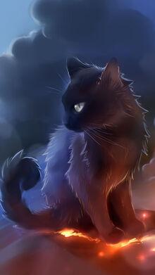 Black-Cat-Anime