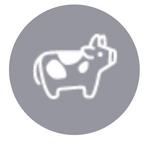 Ox Symbol
