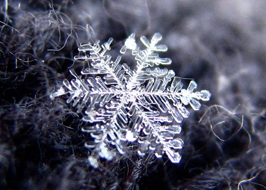 File:Snowflake andreas.jpg