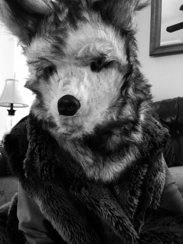 File:Wolfurs.jpeg