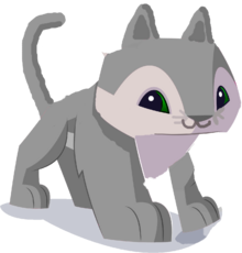 House Cat Animal Jam By Downinfront