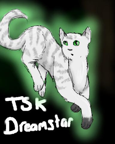File:TSK- Dreamstar.png