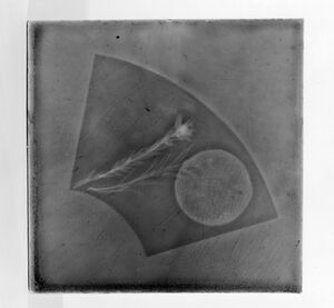 Brooklyn Museum - Tile - overall