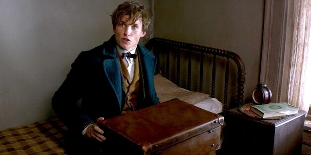 newt-and-suitcase