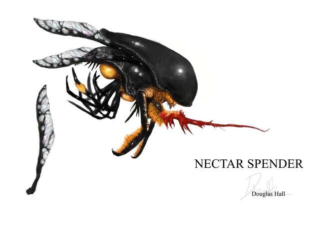 File:Nectar spender 1.jpg
