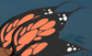 Butterfly Wings.png