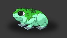 Apps frogs feet2