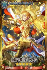 太陽の騎士ナックル