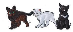 Puppy Kuma