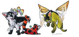 Puppy Motyl