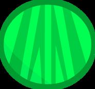 Melon body