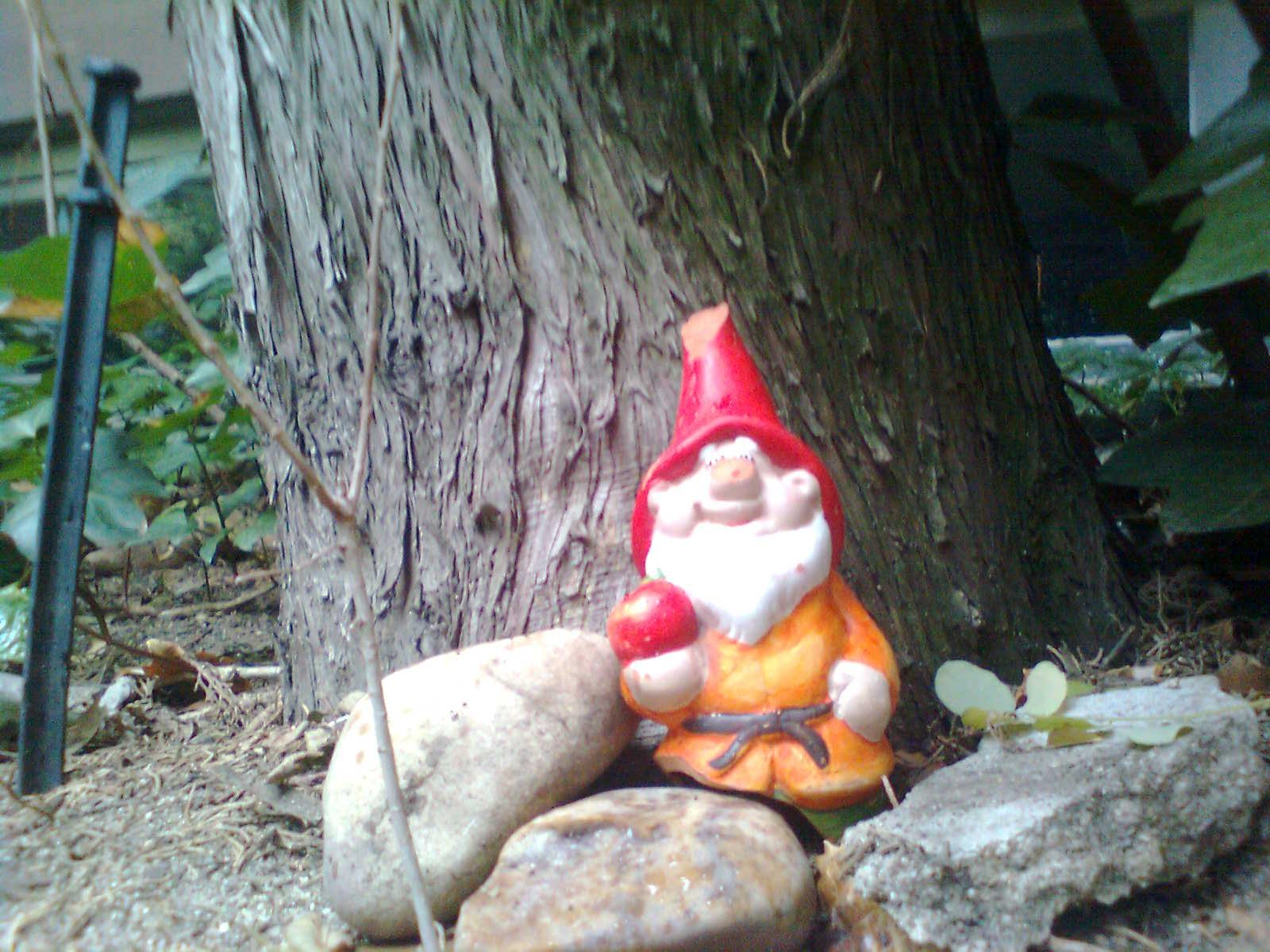 Segismundo el enano de jard n chamipedia wiki fandom for Enano jardin
