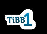 TiBB 1