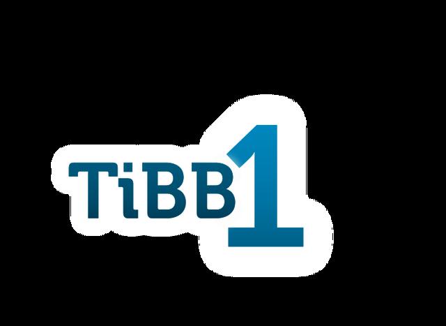 File:TiBB 1.png