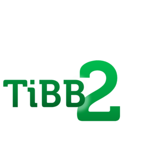 The first logo as TiBB2 from 27 August 2015—22 February 2016