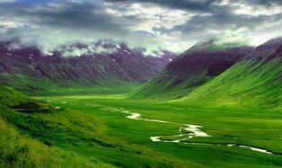 New Europa Landscape