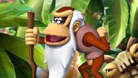 Cranky Kong (Canon)/Adamjensen2030