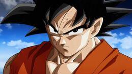 Son Goku (Canon)/Paleomario66