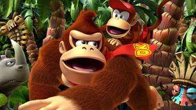Donkey Kong (Canon)/Adamjensen2030