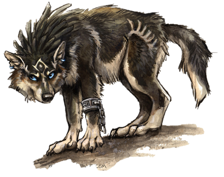Image result for wolf link