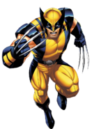 Wolverine (Canon, Death Battle)/Unbacked0