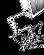 Coire Electricus Lawrencinia (Canon)/Unbacked0