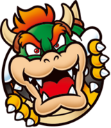 Bowser switch icon