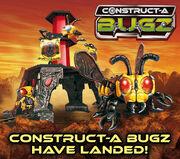 Bugz landed
