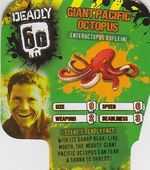 Deadly60Factsheet-Giant Pacific Octopus