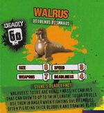 Deadly60Factsheet-Walrus
