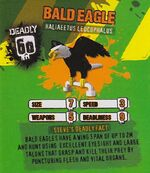 Deadly60Factsheet-Bald Eagle