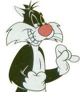 Sylvester Face