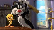 Cartoons-Sylvester-Cat-And-Tweety-Bird-Looney-Tunes-HD-Wallpaper-2560x1440