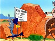 The Road Runner and Wile E