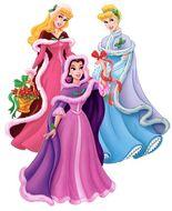 Princesses fur capes 2936