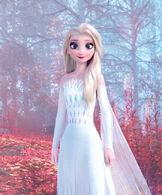 Fifth Spirit Elsa