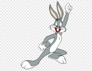 Bugs-bunny-daffy-duck-rabbit-png-clip-art