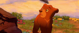 Brother-bear-disneyscreencaps.com-9003
