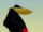 Straw Hat Crow