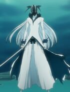 Bleach - Ichigo Kurosaki 110