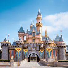 Disneyland.castle