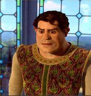 Shrek as a human