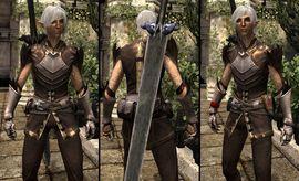 DA2 Grafted Spirit Hide - Fenris companion armor