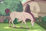 Swift Wind Horsey